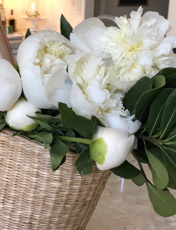 My Obsession With Peonies And Hydrangea – A Great Alternative