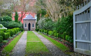 Long driveway leading to a small house with beautiful gardens