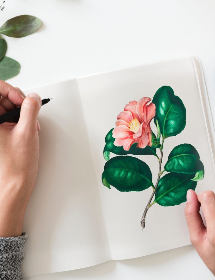 My Ongoing Love Affair With Botanical Prints