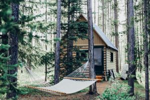 Remote cabin with tall trees and hammock for relaxing