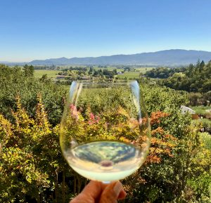 Wine glass with view of mountains and flowers at our favorite restaurant