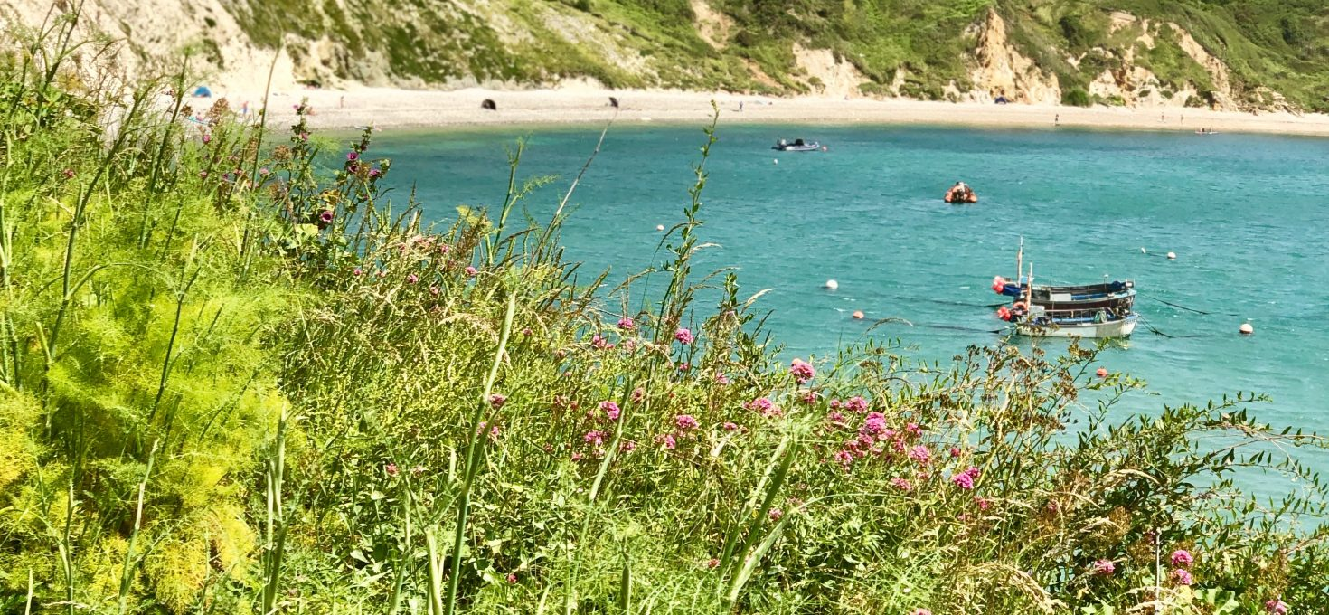 Jolly Ole England – Dorset The Third Time's A Charm