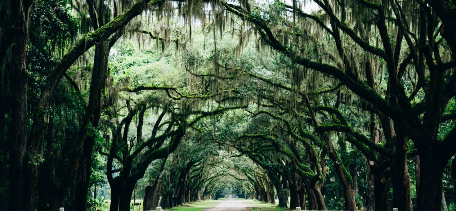 Exploring The Lowcountry – Beautiful Beaufort